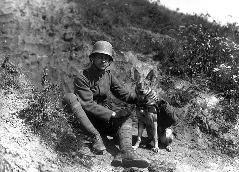 ww1-animals-45